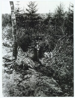The wooden cross where Kaj Munk was murdered in 1944